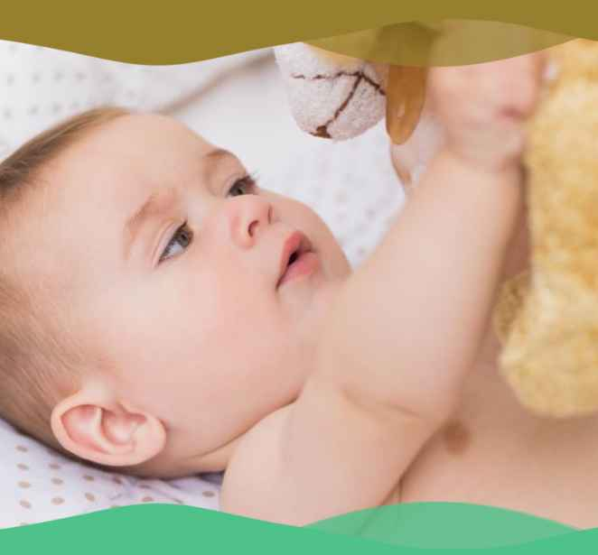 teddi-bear-day-care-tupper-plains-infant-care